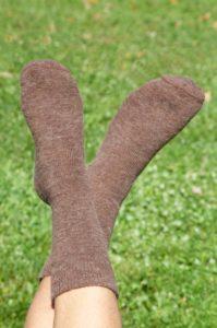 Pinnacle Baby Alpaca Brown Casual Classic Socks