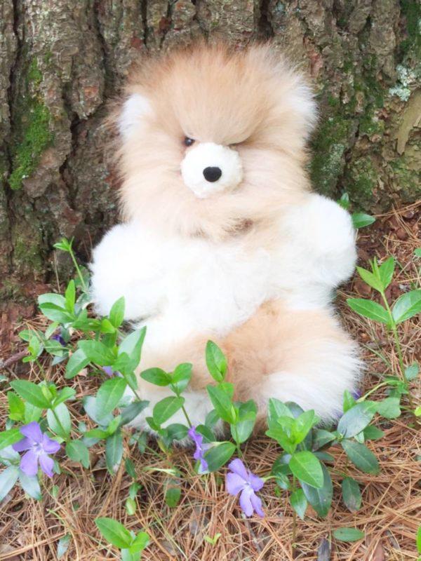 10 Inch Pure Alpaca Teddy Bear