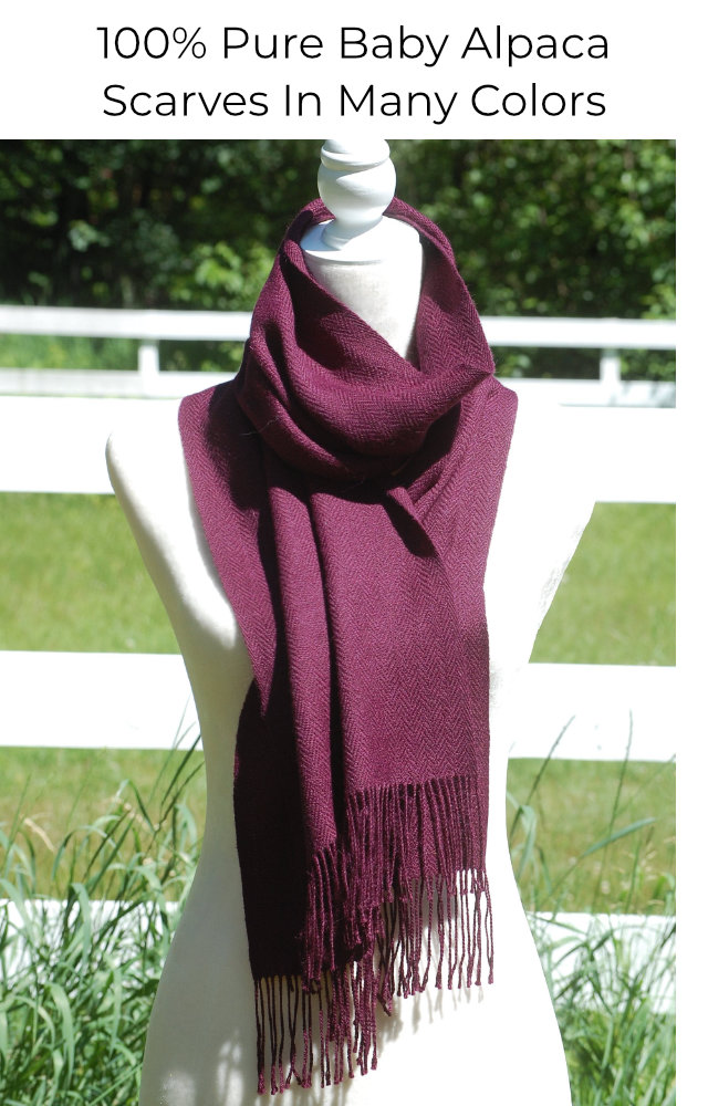 Show our alpaca scarves for men and women in many colors.