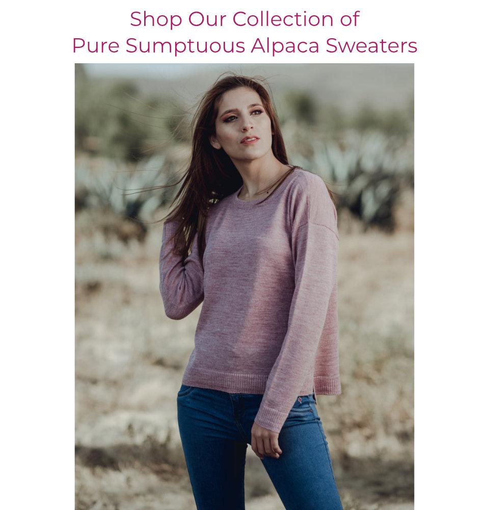 Shop Alpaca Sweaters for Women