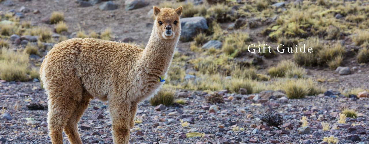 Mt. Caesar Alpacas Pure Alpaca Knitwear Gift Guide